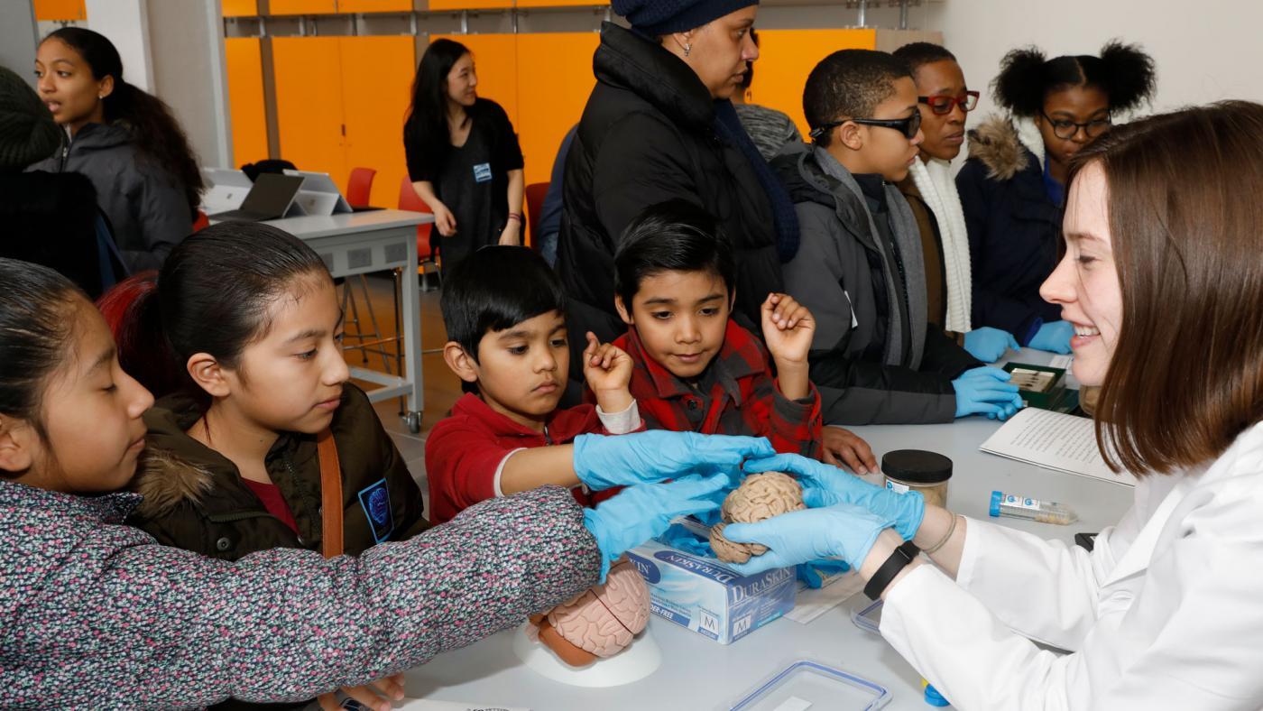 Saturday Science at BioBase Harlem