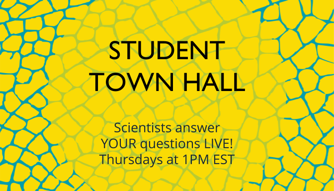 Student Town Hall - Thursdays at 1pm!