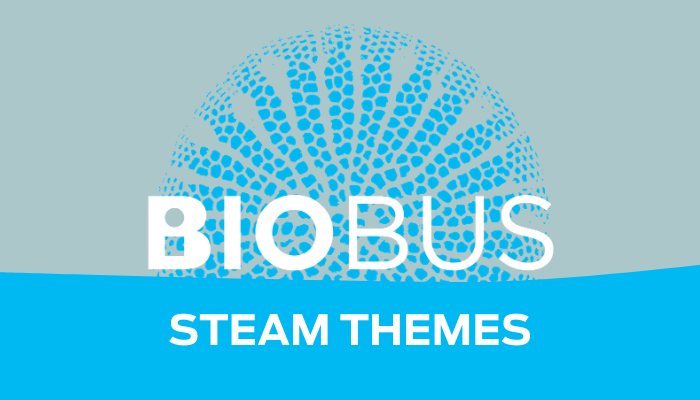 Explore a new STEAM Theme every month!